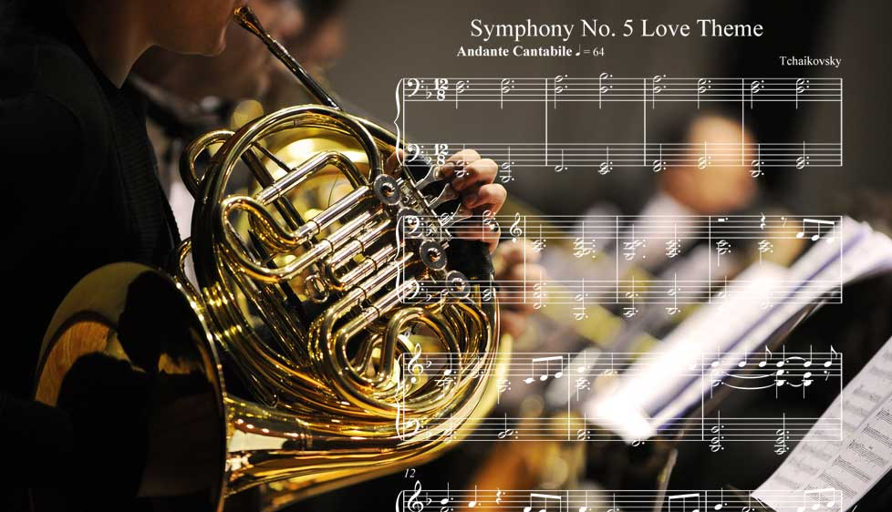 ↑第2樂章:稍自由的、如歌的行板(Andante cantabile, con alcuna licenza)